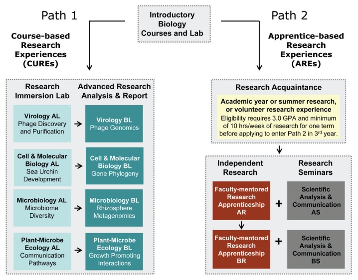 Comparing the Impact of Course-Based and Apprentice-Based Research Experiences in a Life Science Laboratory Curriculum.